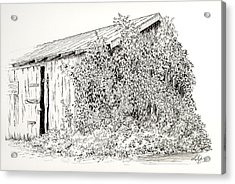 Old Shed Acrylic Print by Deborah Dallinga