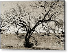 Old Texas Frontier  Acrylic Print