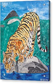 Old Tiger Drinking Acrylic Print by Valerie Ornstein