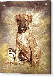 Old Time Boxer Portrait Acrylic Print