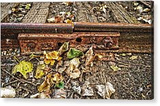 Old Tracks Acrylic Print