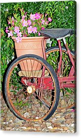 Old Tricycle Acrylic Print by Susan Leggett