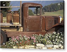 Old Truck In Tennessee Acrylic Print by Stan and Anne Foster