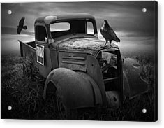 Old Vintage Chevy Pickup Truck With Ravens Acrylic Print