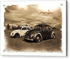 Old Vw Beetles Acrylic Print by Steve McKinzie