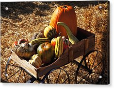 Old Wagon Full Of Autumn Fruit Acrylic Print by Garry Gay