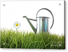 Old Watering Can In Grass With White Acrylic Print by Sandra Cunningham