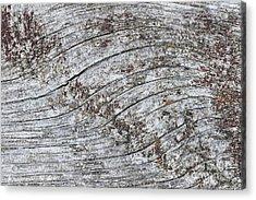 Old Weathered Wood Abstract Acrylic Print by Elena Elisseeva