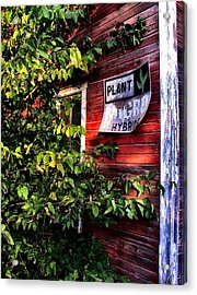 Old Williams Indiana Feed Mill Detail Acrylic Print by Julie Dant