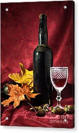 Old Wine Bottle Acrylic Print by Carlos Caetano
