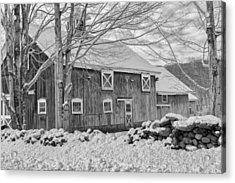 Old Winter Bw  Acrylic Print