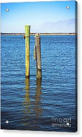 Old Wood Pilings In Blue Water Acrylic Print by Colleen Kammerer