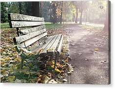 Rustic Wooden Bench During Late Autumn Season On Bright Day Acrylic Print