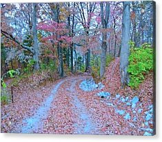 Ole Kentucky Rural Road To Nowhere Acrylic Print