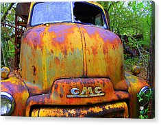 Ole Rusty Full Frontal Acrylic Print by Dana  Oliver