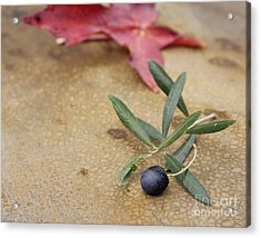 Acrylic Print featuring the photograph Olive by Cindy Garber Iverson