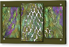 Olive Garden And Lavender Fields. Triptych Acrylic Print