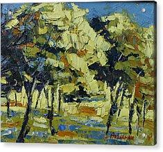 Olive Grove Acrylic Print by Yvonne Ankerman