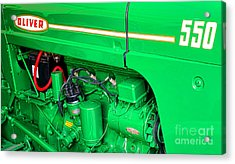 Oliver 500 Acrylic Print