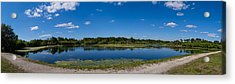 Ollies Pond In Port Charlotte, Florida Acrylic Print by Panoramic Images