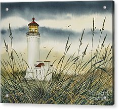 Olympic Coast Sentinel Acrylic Print by James Williamson