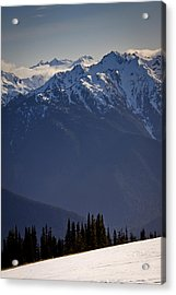 Olympic National Park Acrylic Print by Albert Seger