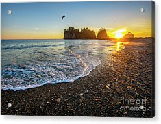 Olympic Peninsula Sunset Acrylic Print