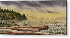 Acrylic Print featuring the painting Olympic Seashore Sunset by James Williamson