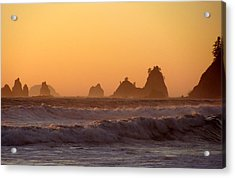 Olympic Sunset Acrylic Print by Ty Nichols
