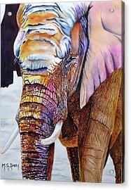 Omega Acrylic Print