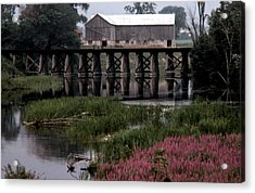 Omemee In The 70 Acrylic Print