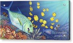 Omilu Bluefin Trevally Acrylic Print by Tammy Yee