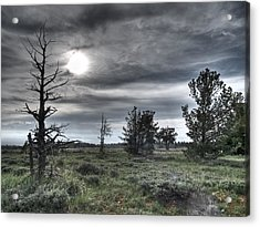 Ominous Acrylic Print by Clyde Mead