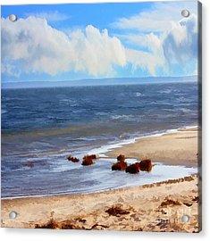 On A Clear Day Acrylic Print by Judy Palkimas