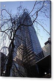 On A Clear Day...moma Courtyard Ny City Acrylic Print by Arthur Miller