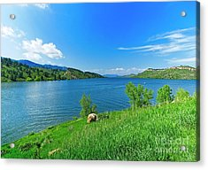 On A Perfect Summer Afternoon Acrylic Print