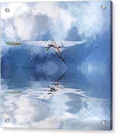 On A Wing And A Prayer Acrylic Print by Cyndy Doty
