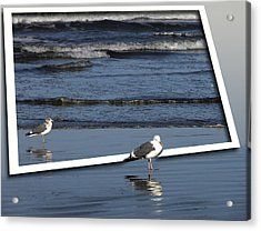 On An Oregon Beach Acrylic Print