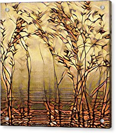 On An Untrodden Path Acrylic Print