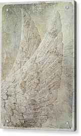 On Angels Wings Acrylic Print