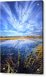 Acrylic Print featuring the photograph On Frozen Pond by Phil Koch