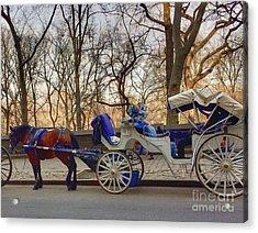 On My Bucket List Central Park Carriage Ride Acrylic Print