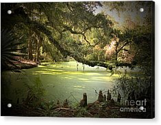 On Swamp's Edge Acrylic Print by Scott Pellegrin