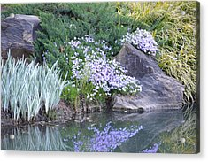On The Banks Of The Pool Acrylic Print by Linda Geiger