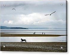 On The Beach Acrylic Print by Mal Bray