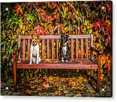 On The Bench Acrylic Print