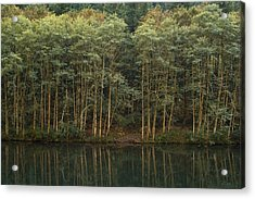 On The Clackamas Acrylic Print