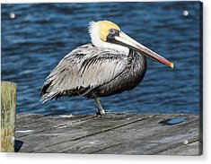On The Dock Acrylic Print by Gregg Southard