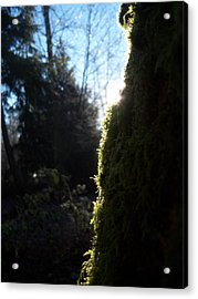 On The Egde Of Light Acrylic Print by Ken Day
