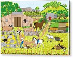 On The Farm Acrylic Print by Diana-Lee Saville